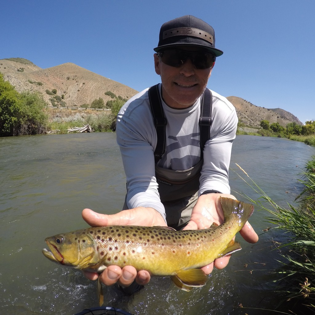 Fishon energy 801 fly fishing for Fish on energy