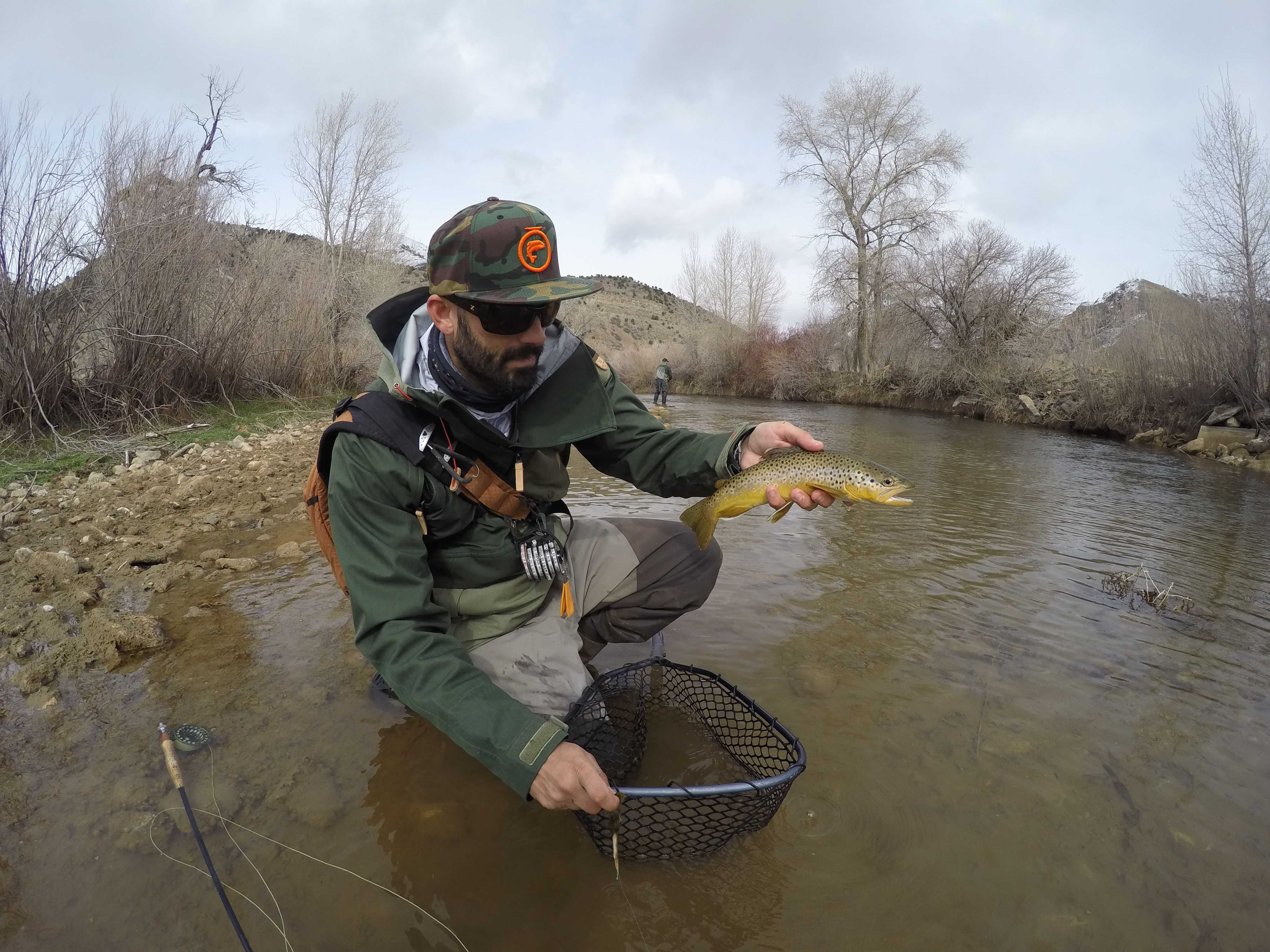 Brad 801 fly fishing for Weber river fishing report